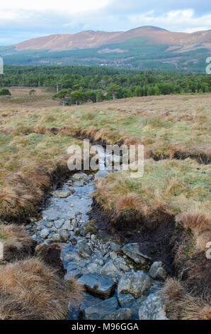 Mountain Stream flowing gently down the slopes of Cairngorm Mountain in the Scottish Highlands - Stock Image