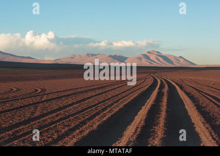 Tyre tracks run off into the distance across the Bolovian altiplano - Stock Image