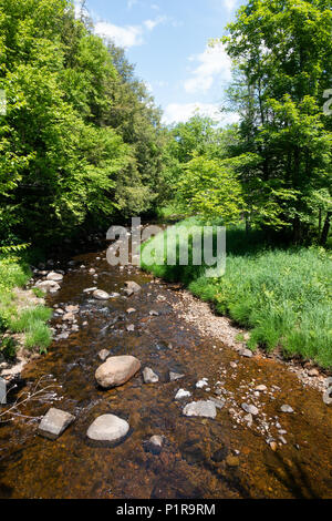 Robbs Creek, a tributary of the Sacandaga River in the Town of Wells, NY in the Adirondack Mountains. - Stock Image