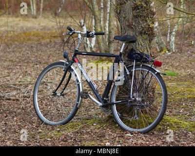 Black bicycle parked against tree - Stock Image