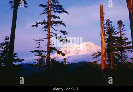 Mt Rainier during sunset Washington State USA 1998 - Stock Image