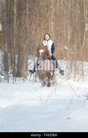 A young woman riding a brown horse in the forest - Stock Image