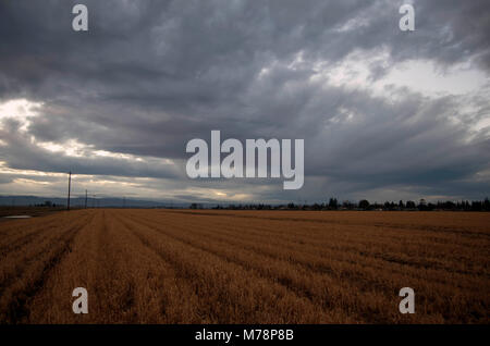 Storm clouds roll in outside of the city of Woodland. - Stock Image