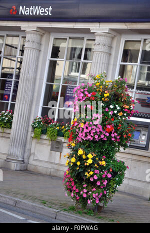 floral stand outside Natwest Ilfracombe, Devon, England, UK - Stock Image