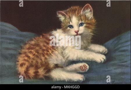 Pensive Kitten - Stock Image