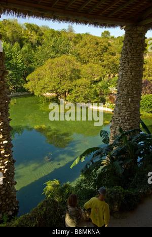 Japanese Tea Gardens San Antonio Tx Texas lily pond and trees seen from above through pagoda window - Stock Image