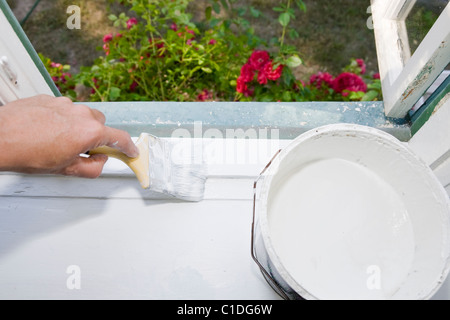 Painting a window sill. - Stock Image