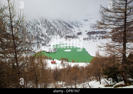 Mountain lake in the Swiss Alps, view from the Bernina Express - Stock Image