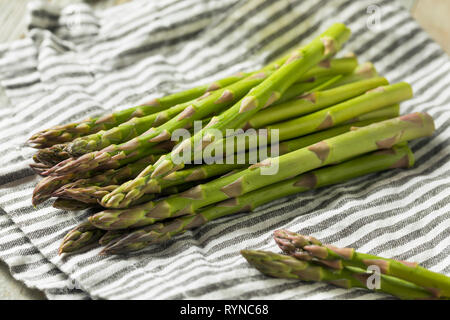 Raw Green Organic Asparagus Spears Ready to Cook - Stock Image