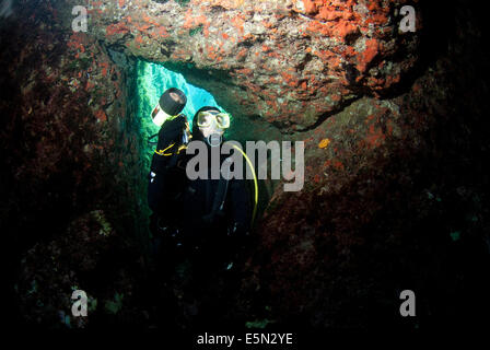 young female diver swimming in cave using dive torch to light the marine life - Stock Image