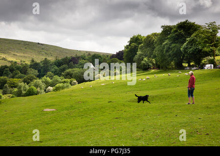 UK, England, Devon, Belstone village, woman exercising dog at edge of Dartmoor - Stock Image