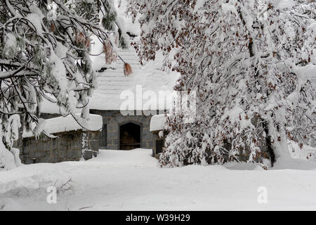Close-up on snow-covered coniferous trees and Yosemite Valley Chapel at Yosemite National Park, California, USA, featuring snow landscapeviewed from t - Stock Image