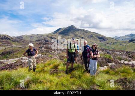 Happy hikers on Yr Arddu with Cnicht mountain behind in Moelwyn hills of Snowdonia National Park in summer.  Nantmor Gwynedd Wales UK Britain - Stock Image