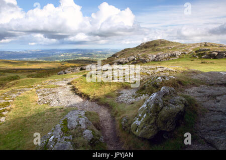 Summers day on Saddle Tor Dartmoor National Park Devon Uk - Stock Image
