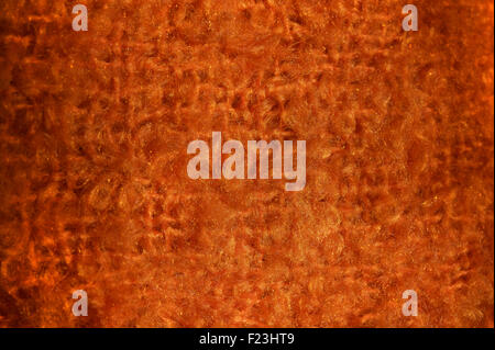 Detail of woven fabric. Orange, synthetic. - Stock Image