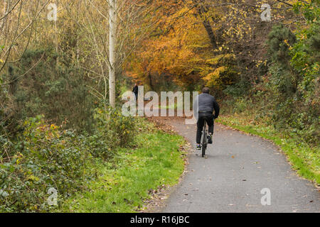 Belfast, N.Ireland, 9th November, 2018. UK Weather: A cyclist and dog walker make their way along the Lagan towpath near Shaw's Bridge in South Belfast. Dry in the afternoon but heavy rain and stronger winds on the way. Credit: Ian Proctor/Alamy Live News - Stock Image