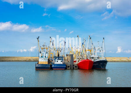Fishing boats (shrimp fishing) in the Netherlands - Stock Image