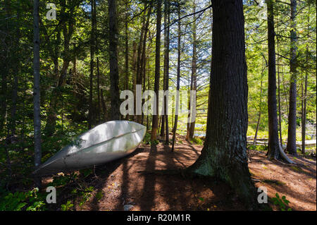 Canoe stored in the forest, close to a lake in the Adirondacks region, New York State, USA. - Stock Image