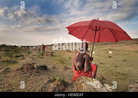 Maasai Warrior Tribesman with Red Umbrella in a Field with Goats and Maasai herder. Kenya, Africa. - Stock Image