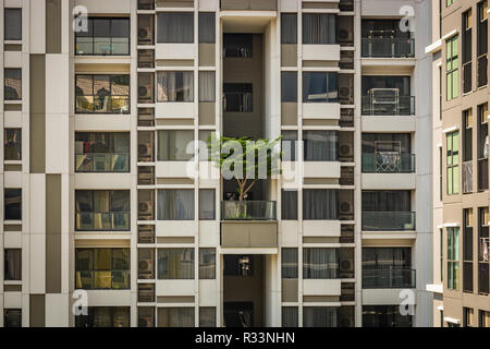 White building in Bangkok with a green tree on the balcony, a building with windows and balconies, Thailand - Stock Image