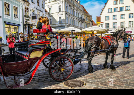 A horse drawn carriage and rider for hire ride into the Town Square on a busy summer day with tourists enjoying the medieval streets, cafes and cafes - Stock Image