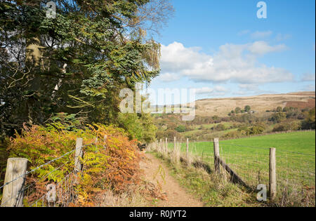 Footpath to Beck Hole in autumn North York Moors North Yorkshire England UK United Kingdom GB Great Britain - Stock Image
