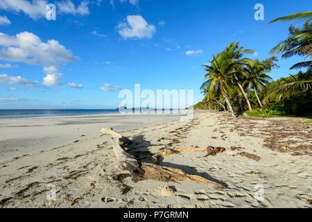 View of popular Chilli Beach, Cape York Peninsula, Far North Queensland, FNQ, QLD, Australia - Stock Image
