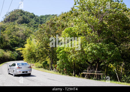 in St Lucia, The Caribbean - Stock Image