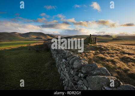 A well preserved part of Dere Street, Roman road looking south towards Woden Law native hill fort just north of the Scottish Border - Stock Image