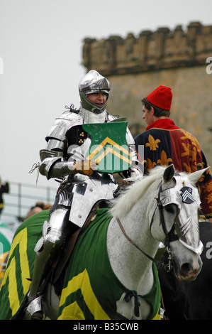 Knight on horseback - Stock Image