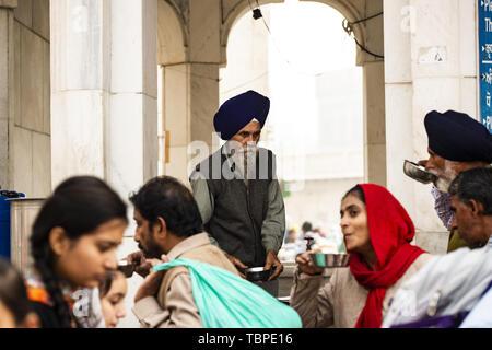 A Sikh man wearing a dastar is serving  food to pilgrims in the Harmandir Sahib (Golden Temple) Amritsar, Punjab, India. - Stock Image