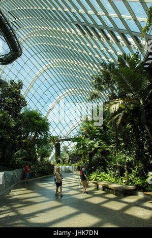 Gardens by the Bay - Stock Image