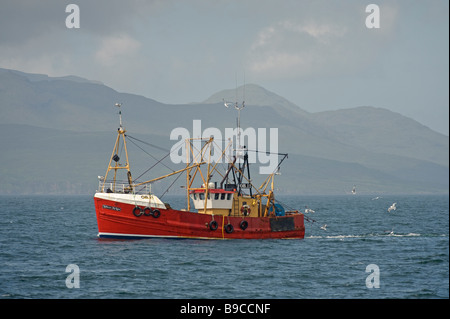 Oban trawler Rebecca McLean fishing for langoustines in the Sound of Mull, Scotland. - Stock Image