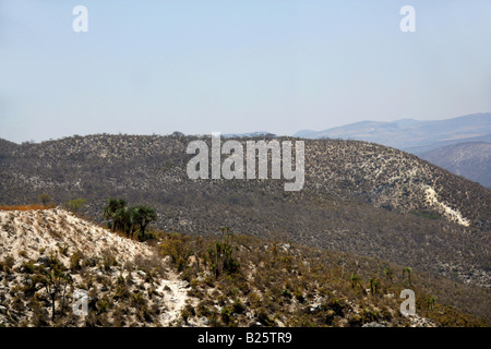 Sierra Madre Foothills, Scrubland Near Oaxaca City, Oaxaca, Mexico - Stock Image