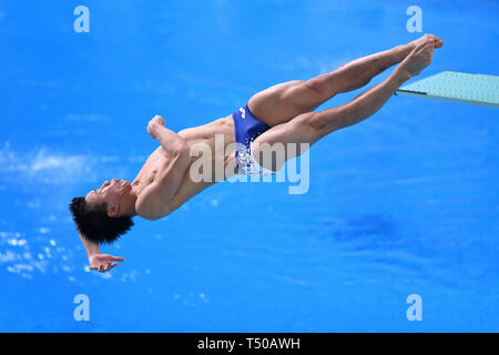 Tatsumi International Swimming Center, Tokyo, Japan. 19th Apr, 2019. Yuto Araki, APRIL 19, 2019 - Diving : Japan Indoor Diving Championship 2019 Men's 1m Springboard Final at Tatsumi International Swimming Center, Tokyo, Japan. Credit: MATSUO.K/AFLO SPORT/Alamy Live News - Stock Image
