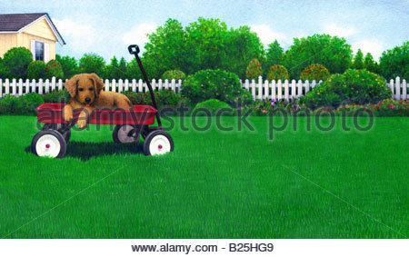 Puppy in a Wagon - Stock Image