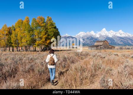 Mormon Row and Teton Range, Grand Teton National Park, Wyoming, United States of America, North America - Stock Image