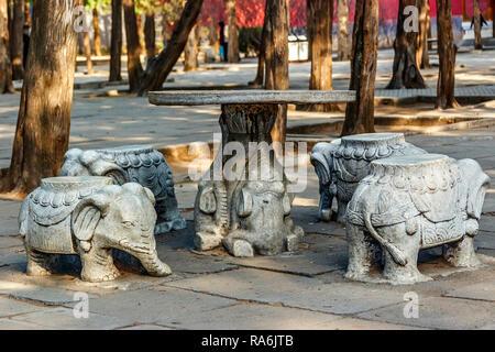 Elephant Stools Beijing China - Stock Image