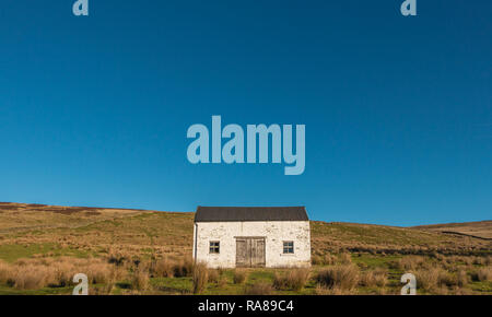 North Pennines AONB landscape, a solitary whitewashed barn on moorland in strong winter sunshine and a clear blue sky - Stock Image