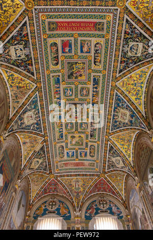 Ceiling of Piccolomini Library inside Siena Cathedral, Siena, Tuscany, Italy - Stock Image