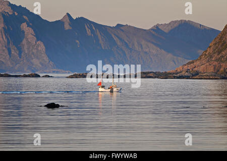 A fishing boat comes in from the sea. Fjord on island Langøya (Vesterålen) in northern Norway. - Stock Image