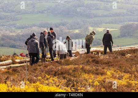 National Trust workers and volunteers on a work party  repairing paths and walk ways on Bosley Cloud or Cloud end on the Gritstone trail Cheshire - Stock Image