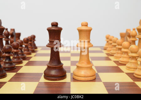 Queens at the center of the chessboard in a challenging attitude - Stock Image