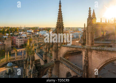 View of the historic center of Seville from the top of the Cathedral of Seville, Seville, Andalucia, Spain, Europe - Stock Image