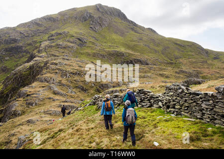 Hikers hiking up Yr Aran mountain from Bwlch Cwm Llan in mountains of Snowdonia National Park. Gwynedd, Wales, UK, Britain - Stock Image