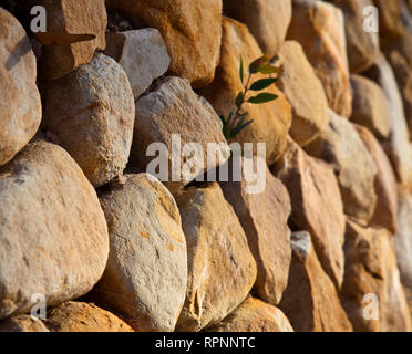 Rock Wall - Stock Image