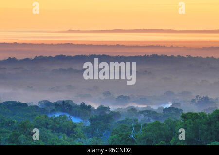 Guatemala, Tikal National Park - Stock Image