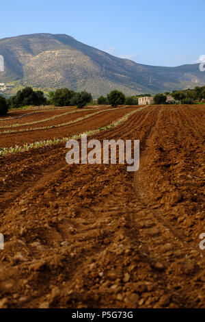 Plowed Farm Fields with farm house in preparation for latest crops with Mountains and Blue Skies, Lagonisi, East Attica, Greece. - Stock Image