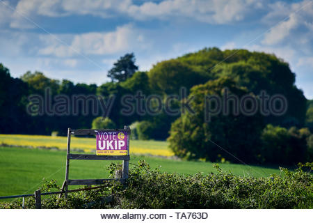 Vote for UKIP poster ,part of Election posters in the Cotswolds in Oxfordshire with Britain approaching Brexit. - Stock Image