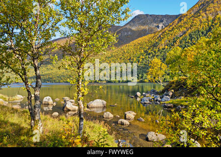 Austerfjorden near Revsves on island Hinnøya in northern Norway on a fine autumn day. - Stock Image